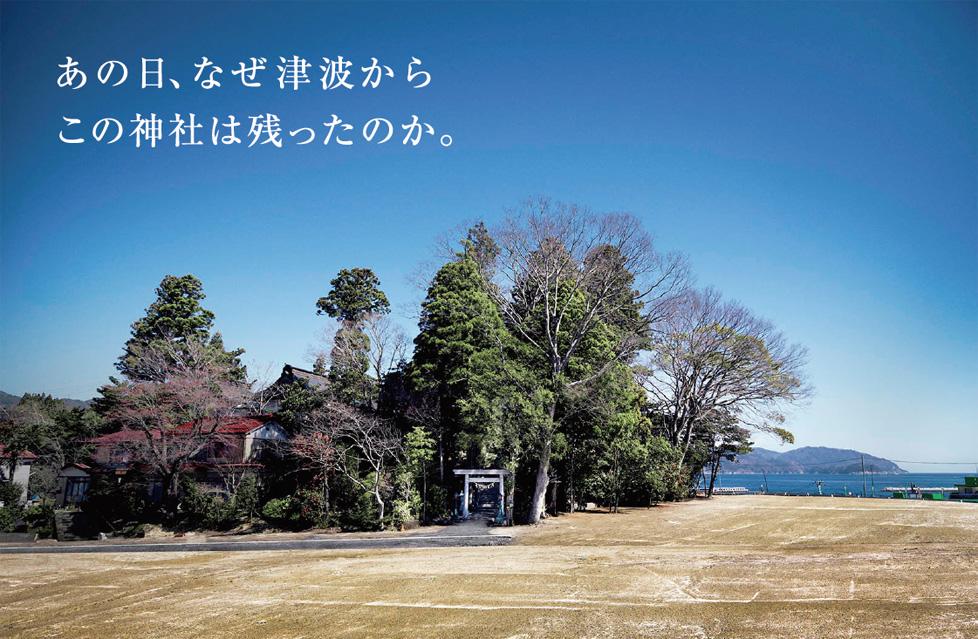 「あの日、なぜ津波からこの神社は残ったのか」の画像検索結果